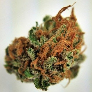 Buy Pink Berry Marijuana weed