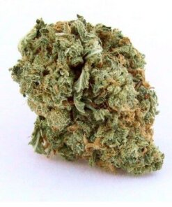 Buy Blue Dream Weed Shop