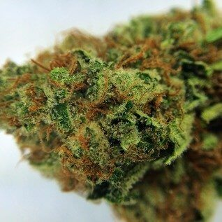 Buy strawberry blue weed online